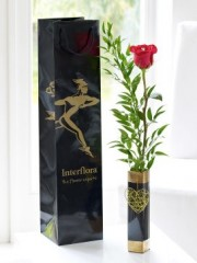 Single Kiss Rose Vase with Chocolates