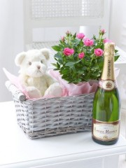 Celebratory Baby Girl Gift Basket