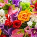 About Summer Flowers from Inverness Florists at a Glance